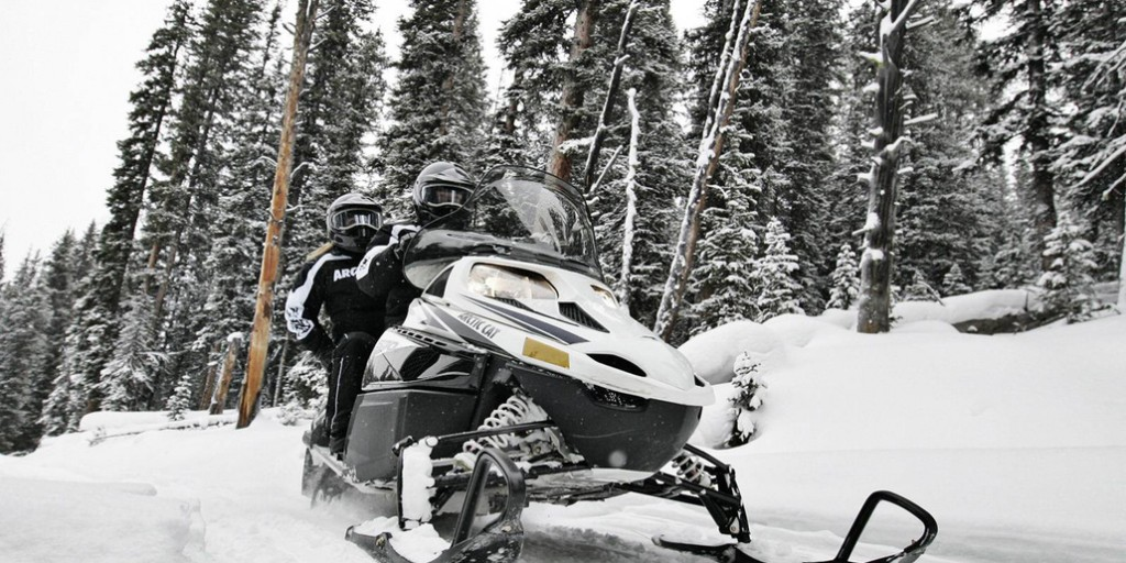 Подвеска снегохода