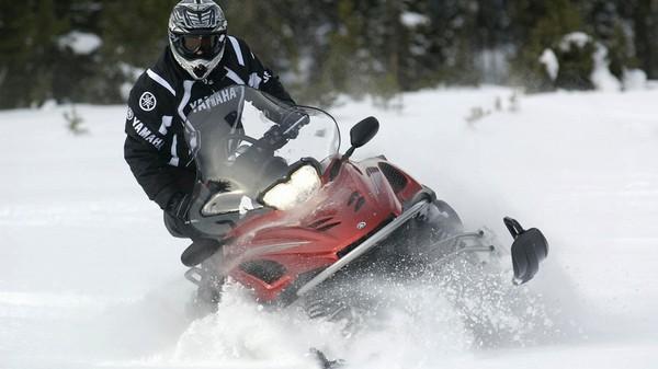 Купить снегоходы Викинг
