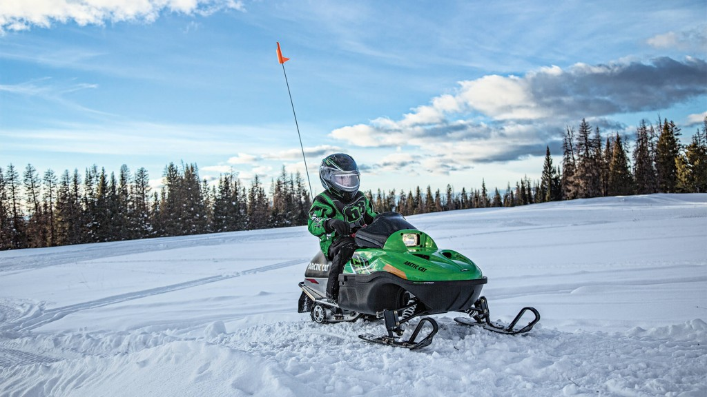 Детский снегоход Arctic Cat ZR 120