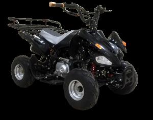 raptor-125-shd