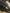 Расширители колесных арок CFMOTO X8,800,2011-