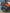 Расширители колесных арок CFMOTO X5 H.O EPS R-X5H.O