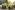 Сравнение TEXTRON HAVOC и POLARIS GENERAL EPS 2019