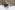 Снегоход РМ Vector 551i